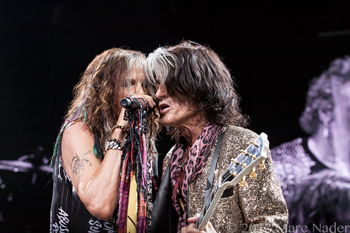 Aerosmith: Sick As a Dog